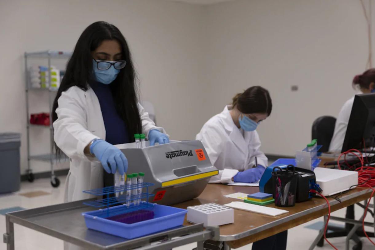 Testing samples for coronavirus