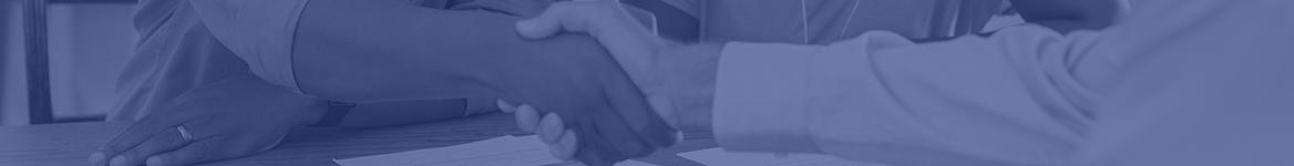 Divider line - shaking hands