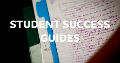 Student Success Guides