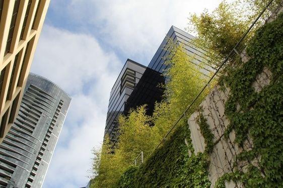 Bellevue's economic outlook brightens