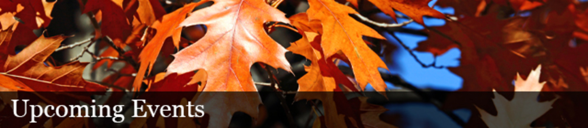 Orange coloed oak leaves. Text: Upcoming Events