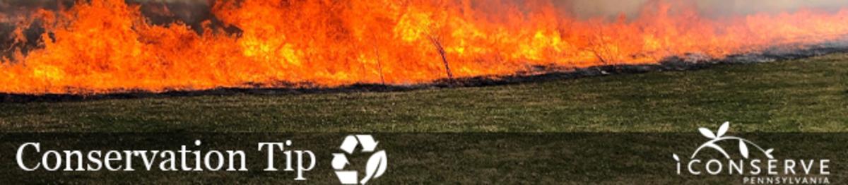 A small line of fire burns a grass field. Text: Conservation Tip