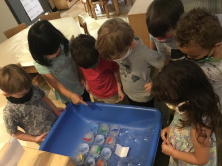 Preschool 1 dinosaur 'eggs'