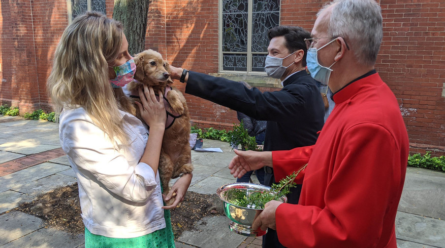 Blessing of the Animals 2020
