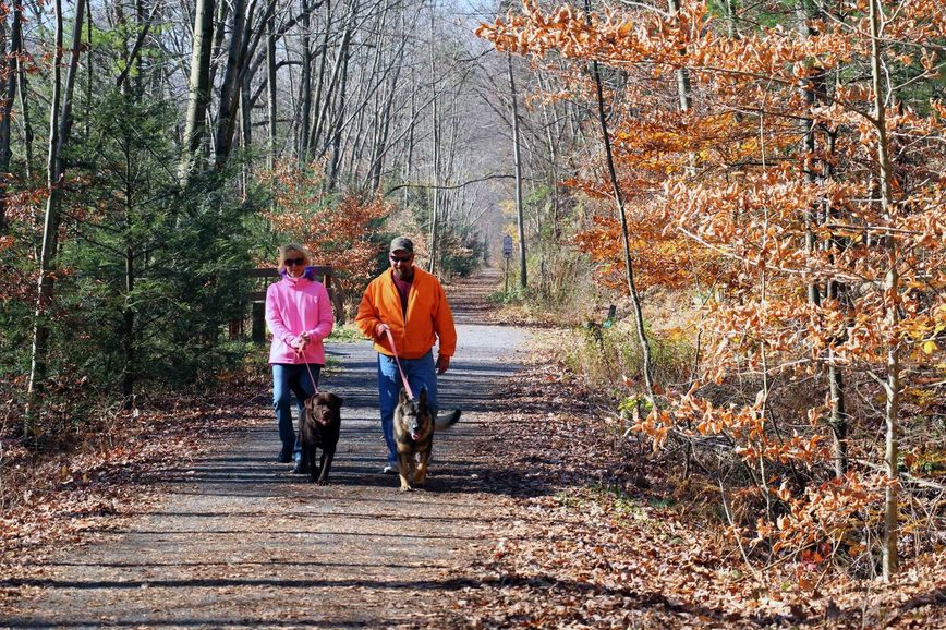 Two people walk two dogs down a stone path in the woods during fall..