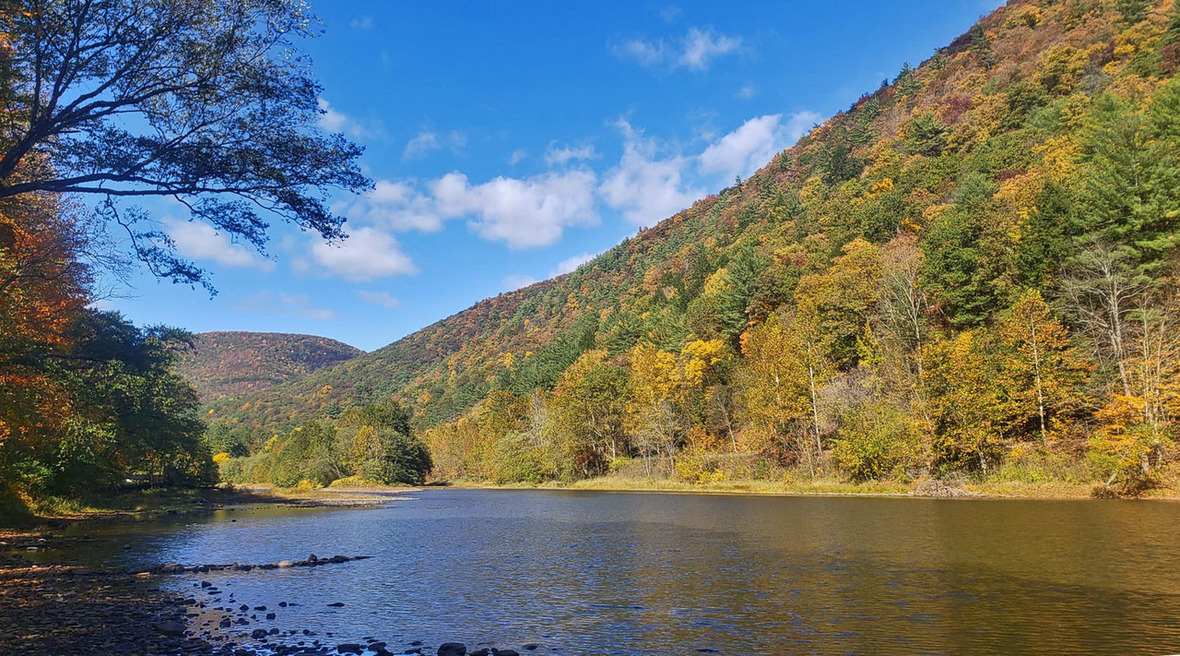 A wide creek flows past tall mountains covered in colorful foliage.