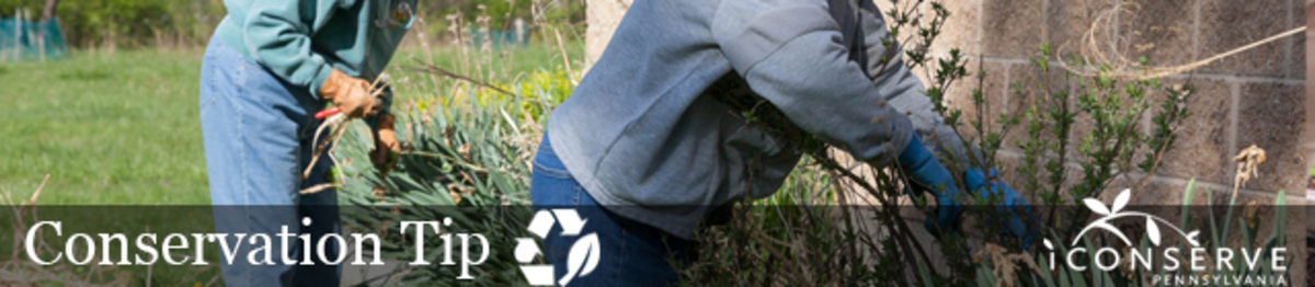 People tend to a garden in sweaters, gloves, and long pants. Text: Conservation Tip