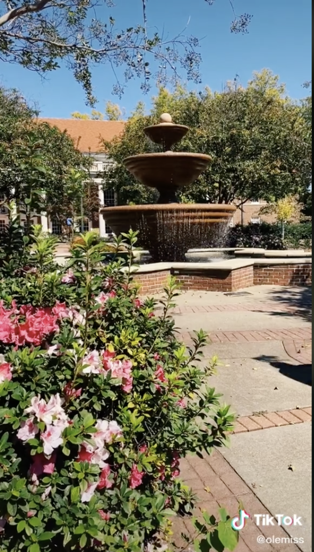 TikTok Screenshot of the fountain