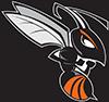 Hornet Image