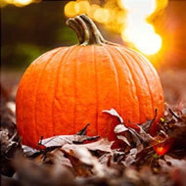 Pumpkin in fall leaves
