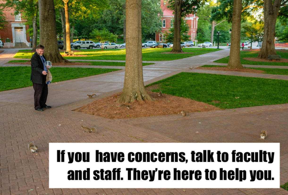 Photo of Squirrel in a tree with text that reads: If you have concerns, talk to faculty and staff about your concerns. They're here to help.