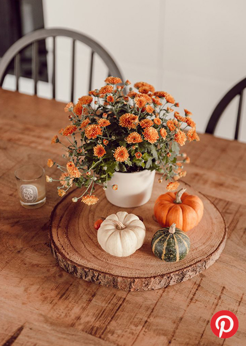 Orange flowers and pumpkins