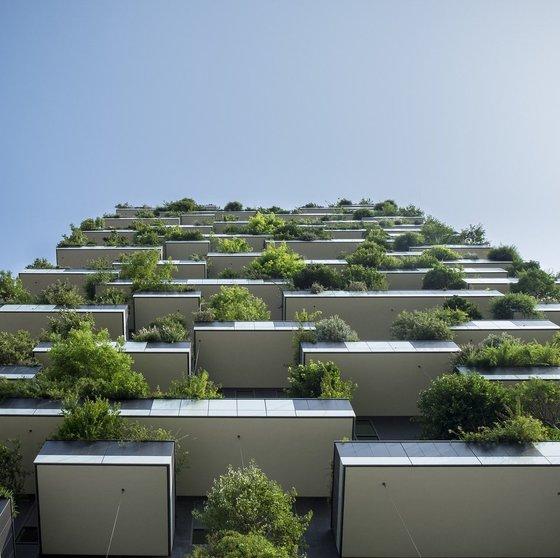 Living, Regenerative, and Adaptive Building Design Strategies