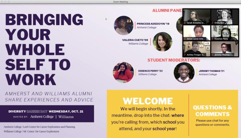 image of alumni panel attendees on zoom grid