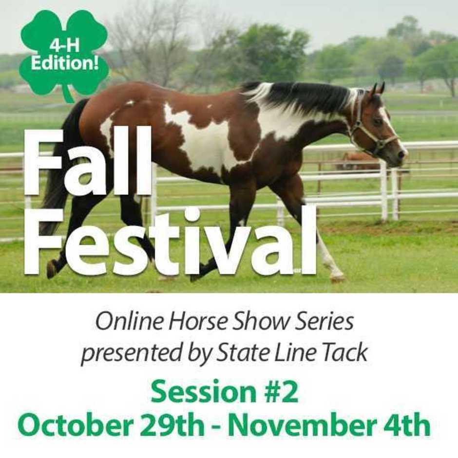 Online horse show series