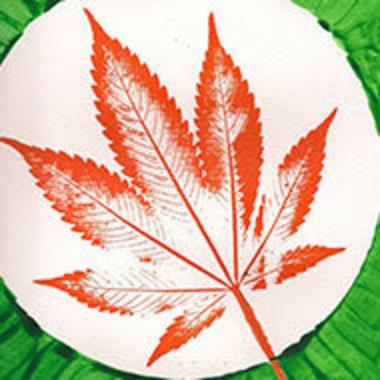 Print of cannabis leaf