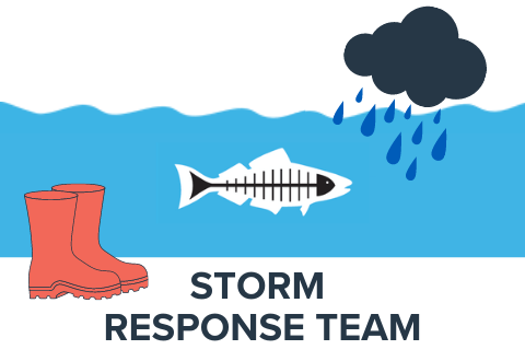Heal the Bay's Storm Response Team