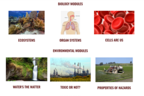 screenshot of the new PEER Program online learning modules