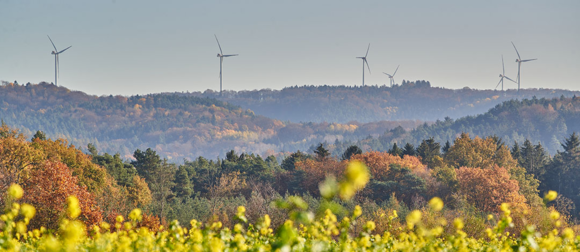 wind turbines next to a forest
