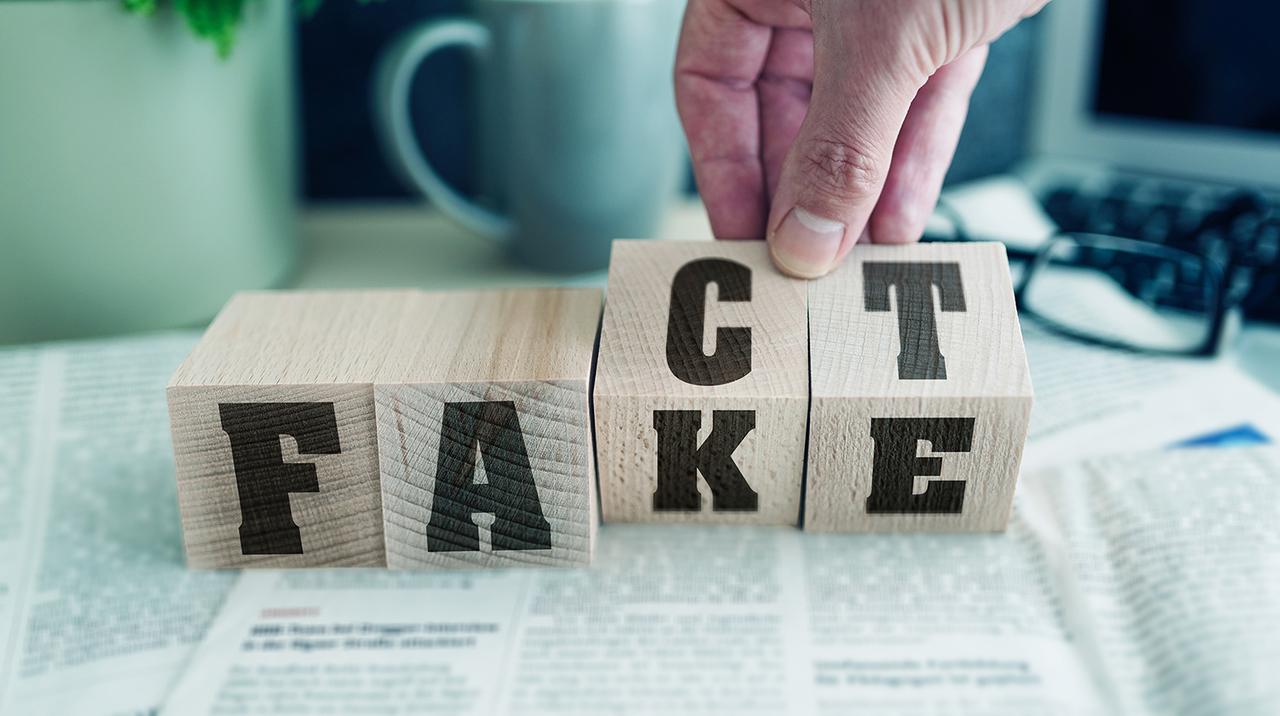 Woodblocks spelling Fact / Fake