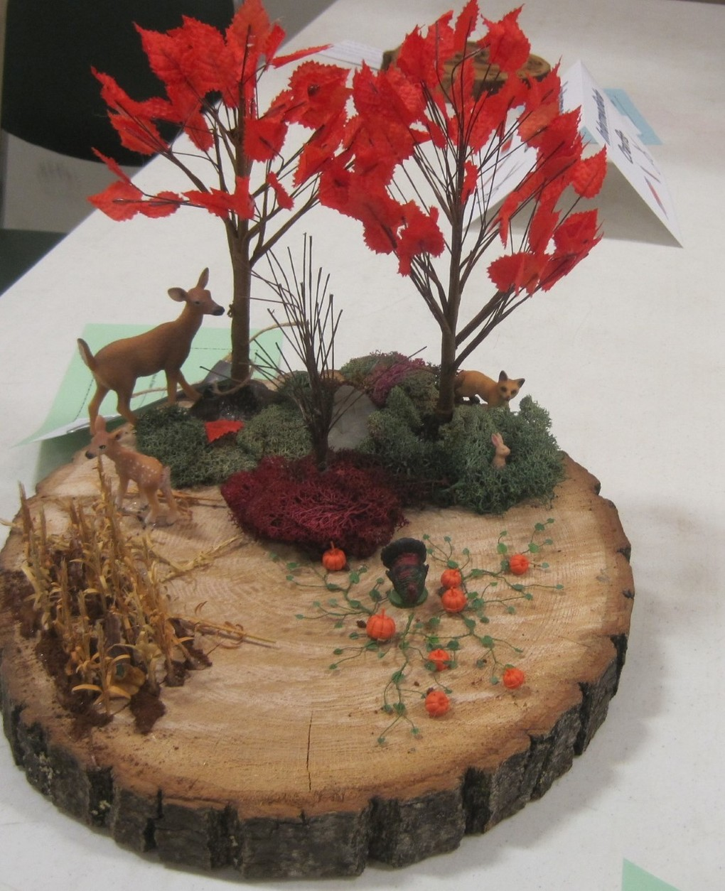 Wildlife WHEP Wisconsin 4-H & Wisconsin 4-H Forestry Contests & Wildlife Art Contest
