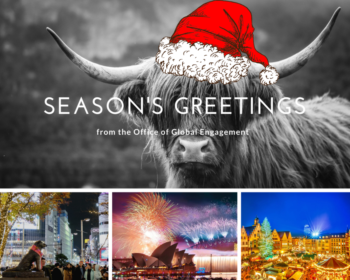 highland cow in santa hat and photos of cities celebrating the holidays