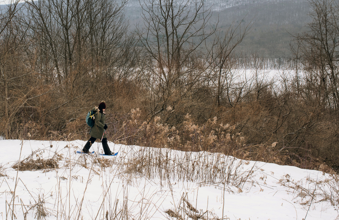 Snow covers the ground, plants, trees, a person uses snowshoes and walking poles to travel down a path. A lake and mountain are in the distance.