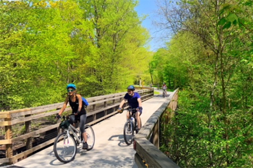 People ride bikes across a wood trail bridge with trees and foliage surrounding the trail.