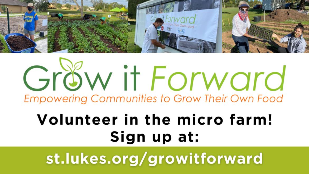 Grow it forward webpage link