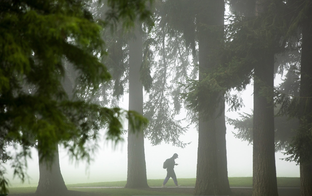 A lone student crosses campus in the fog