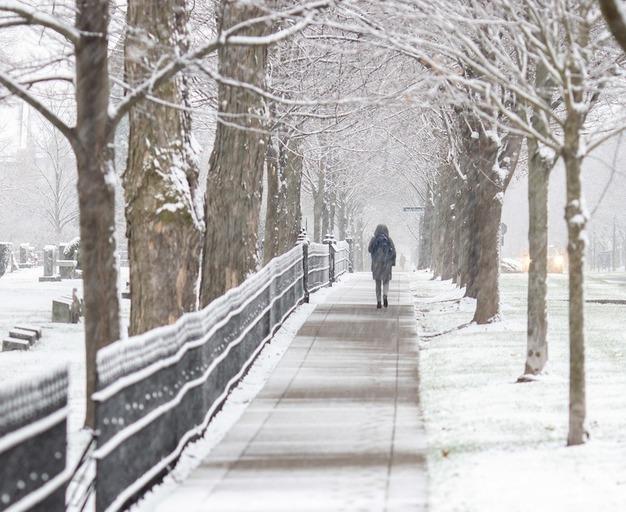 Photo of a person walking down a snowy sidewalk on campus.