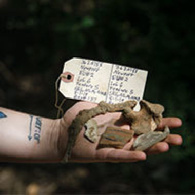 hand holding objects found during an archaeological dig