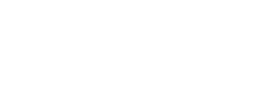 Nonprofit New York policy logo