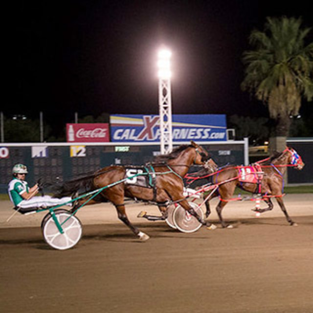 Two horses during night time harness racing