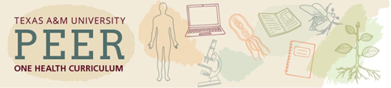 Texas A&M University PEER One Health Curriculum
