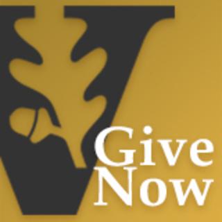 Make a gift to Vanderbilt Law School