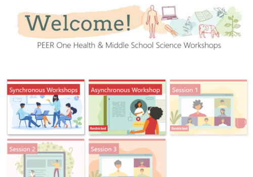 screenshot of the PEER One Health and Middle School science workshop website front page with clip art of various learning evnvironments