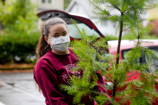Oregon's native Douglas-fir was a popular choice at the Yard Tree Giveaway.