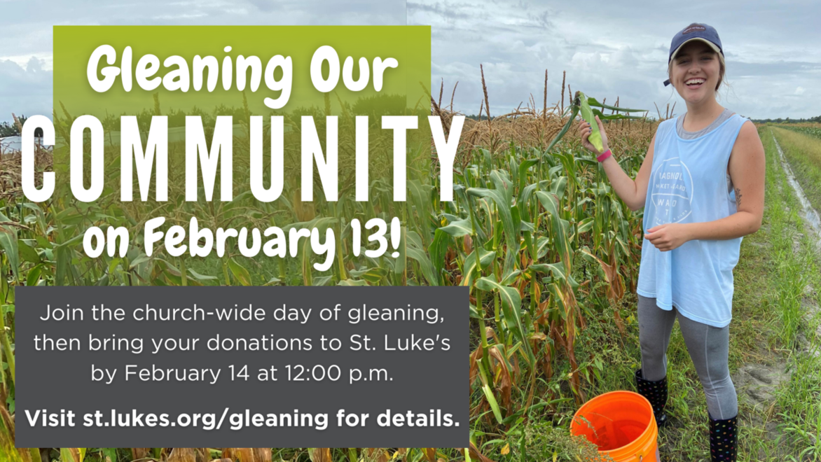 Gleaning webpage link
