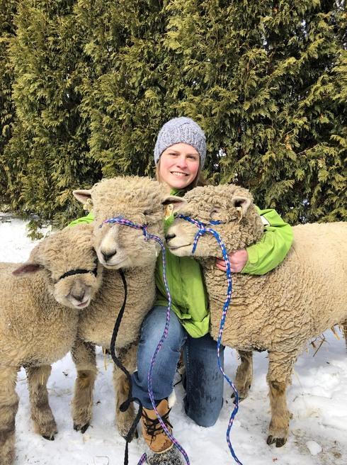 WIS Southdown EWE Lamb starter
