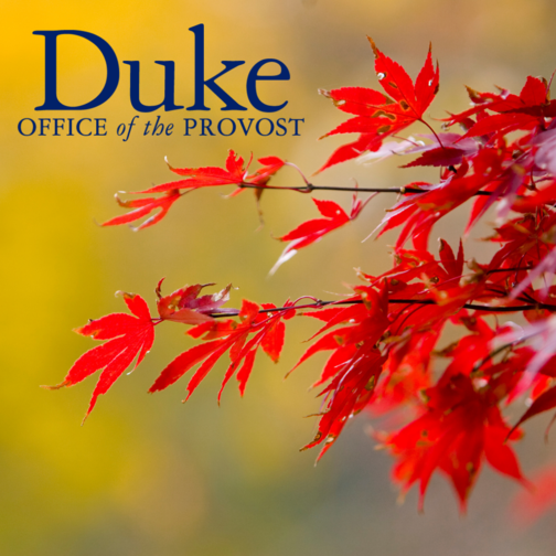 fall leaves over blurred background with duke office of the provost logo