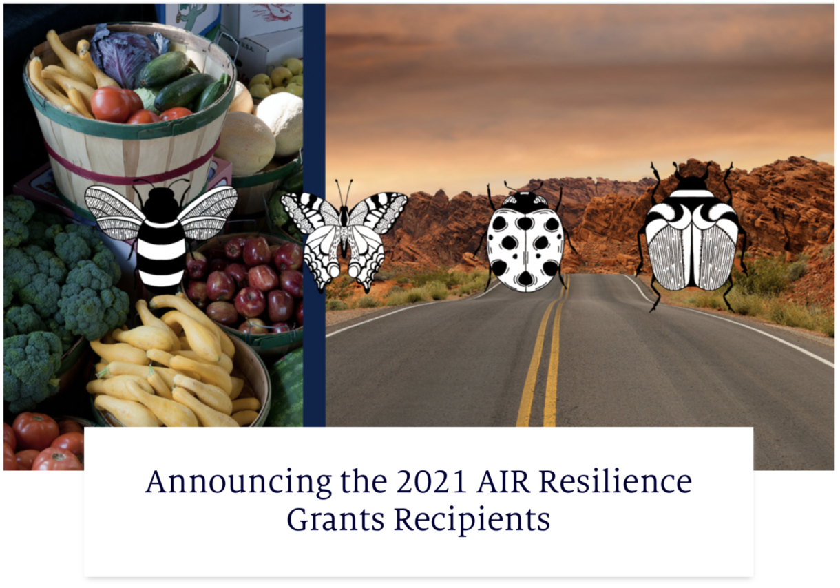 AIR Resilience Grant article