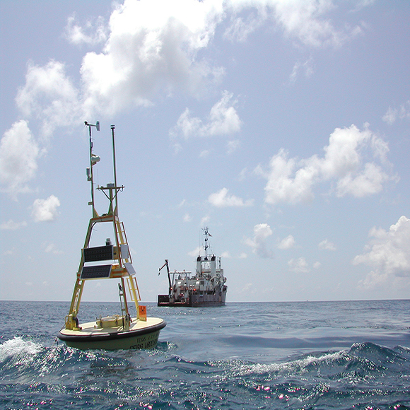 Buoy in the Gulf of Mexico