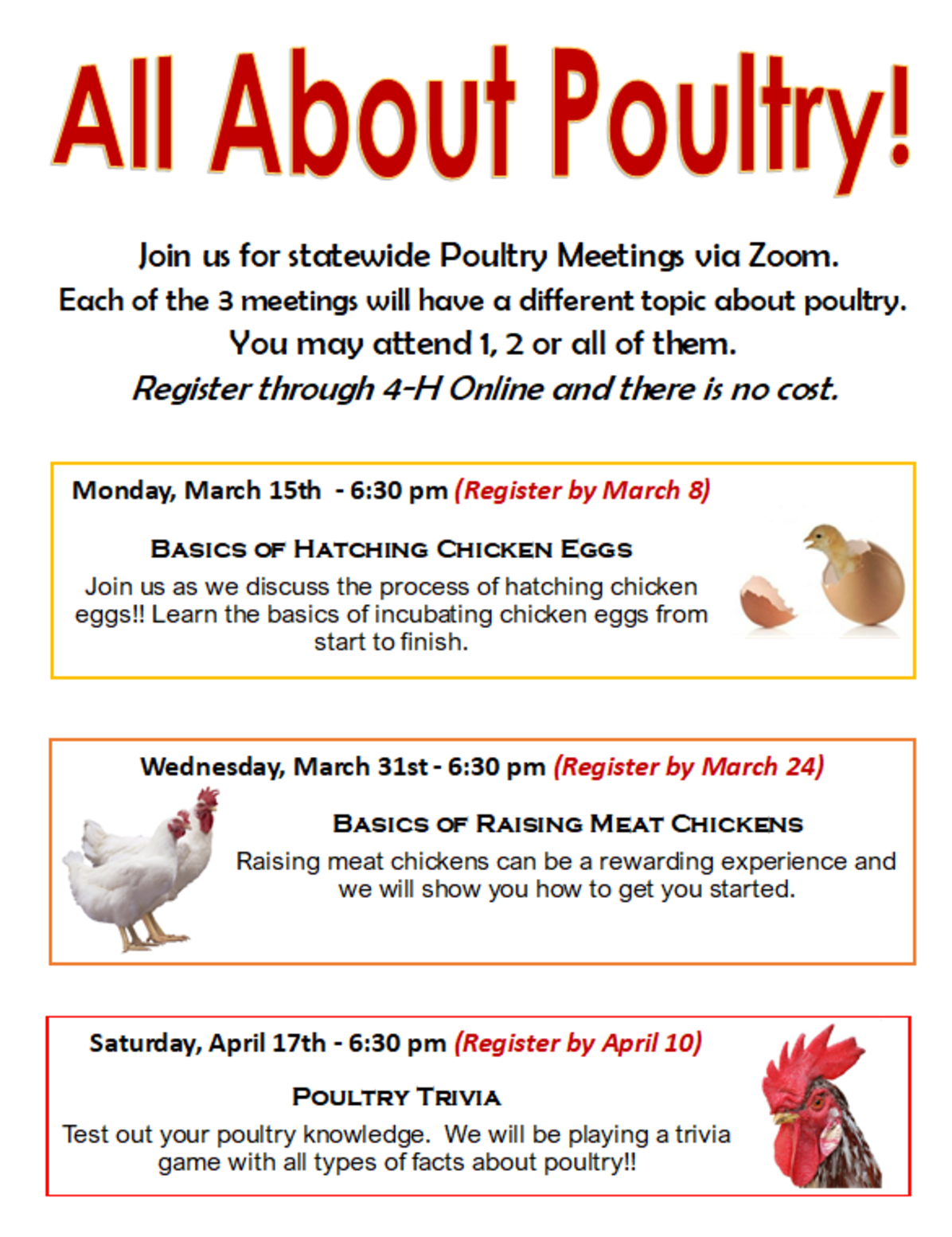 All About Poultry