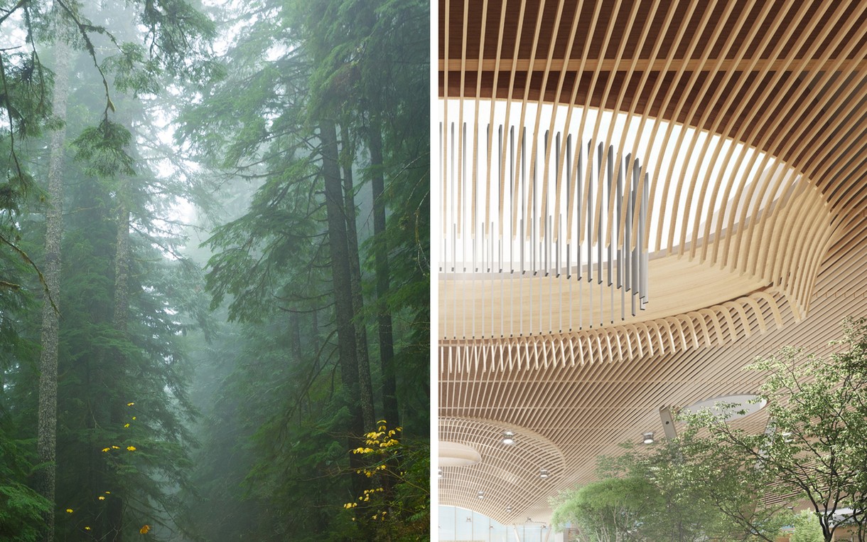 The wooden cieling in the new main terminal will be inspired by the ambiance of regional forests