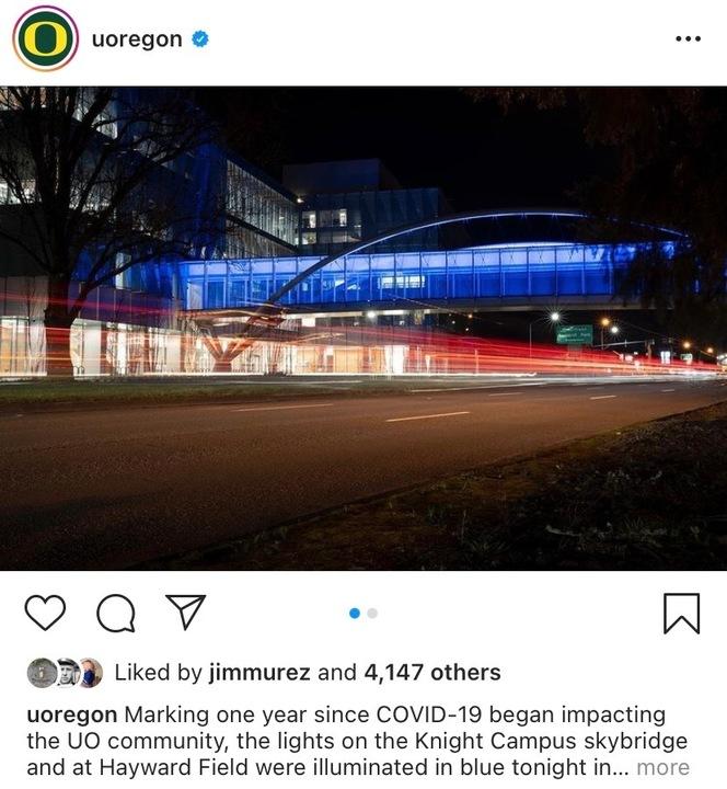 bridge in lights