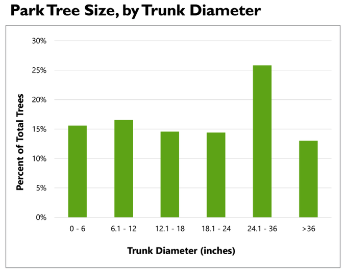 4 out of every 10 trees inventoried is over 24 inches in diameter.