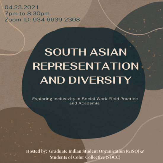 South Asian Representation and Diversity