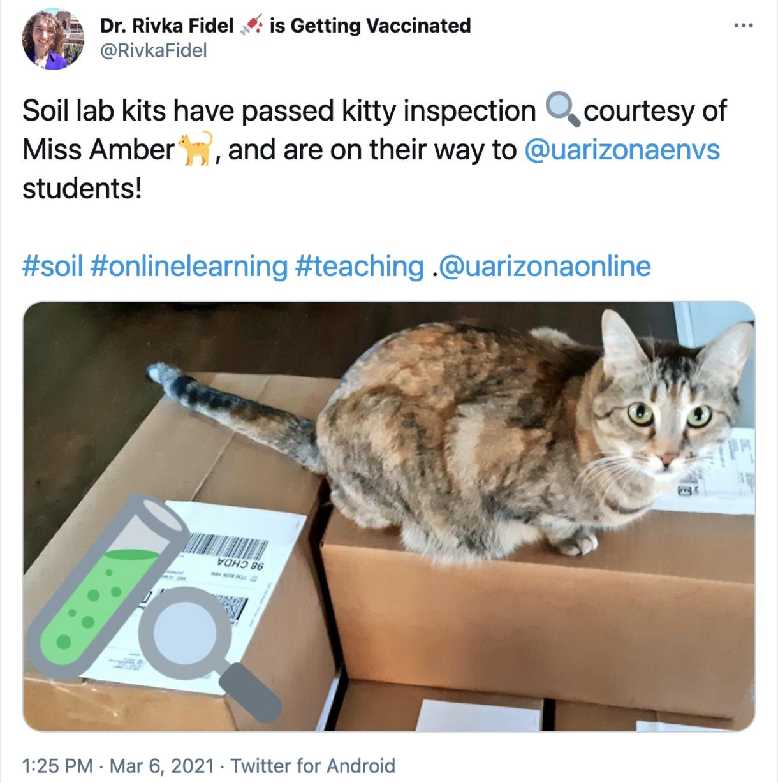 Rivka, kitty, and soil kits