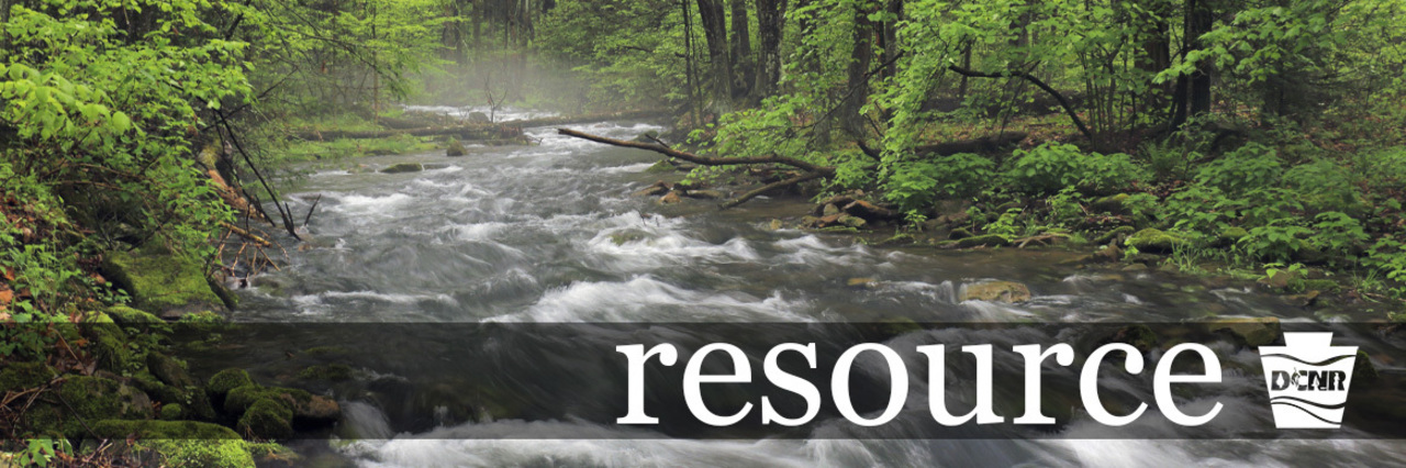 Creek, water, trees, mist, nature, forest. DCNR Logo. Text: resource
